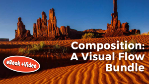 Visual flow mastering the art of composition pdf download